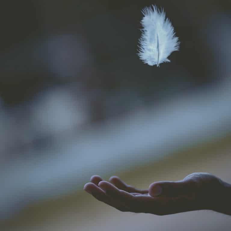 une plume qui tombe dans la paume de main